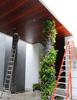 Golden Beach Miami Vertical Garden
