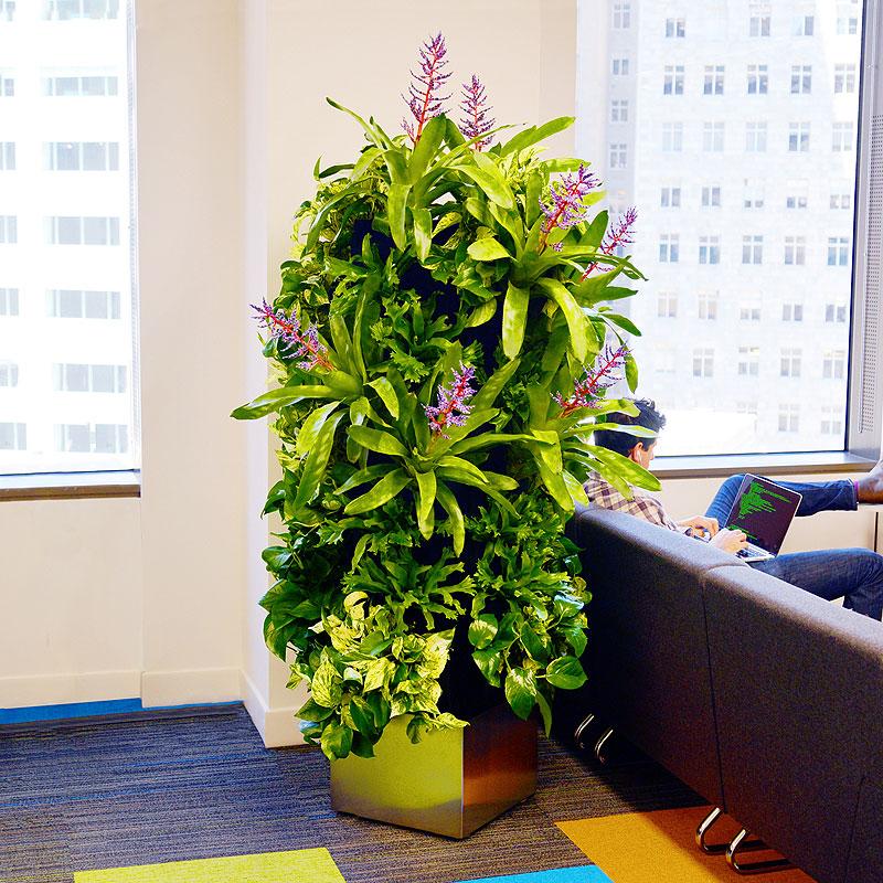 Miami Vertical Garden Living Display