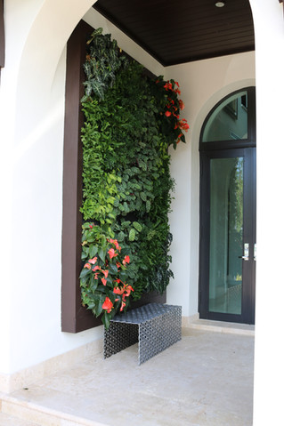 Private Living Wall Benefits