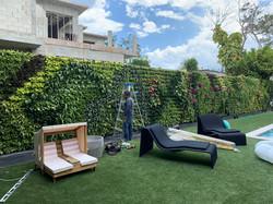 Bal Harbor Miami Vertical Garden