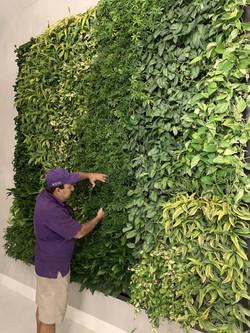 Boca Raton Miami Vertical Garden