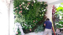 Miami Vertical Garden / Living Walls