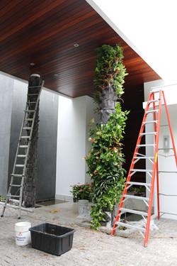 Miami Vertical Garden Miami Living Walls Living columns  1