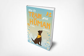 How to Train Your Human - Nick Furnal.jp