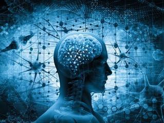 Como é o funcionamento do cérebro em situações críticas