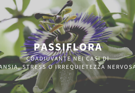 Passiflora coadiuvante nei casi di ansia, stress o irrequietezza nervosa