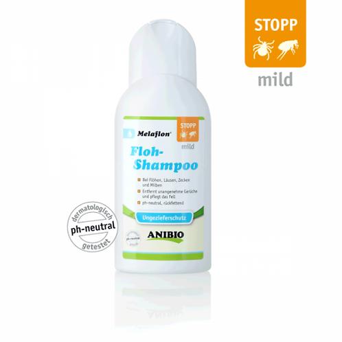 Shampoo antipulci
