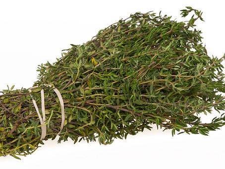 Le proprietà depurative del timo (Thymus vulgaris)
