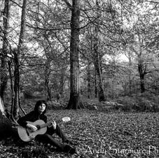 New Forest c2 101120  (5).jpg