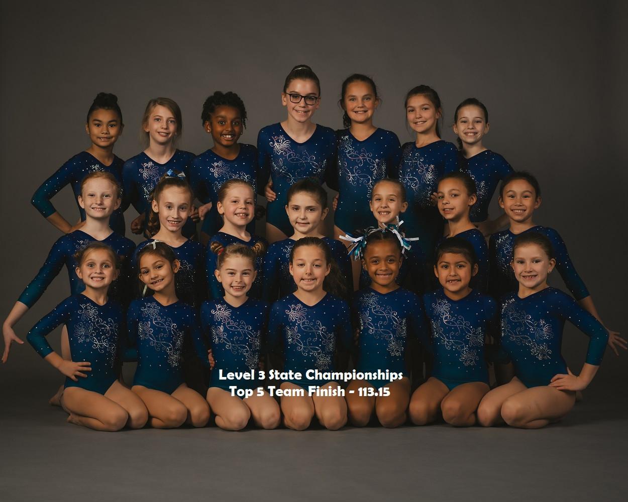 L3 Team State
