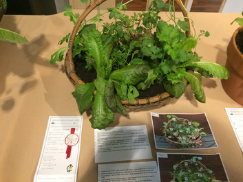 The finished Salad Bowl won 2nd place!