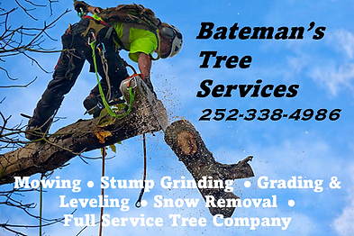 Bateman's Tree Service Post.png