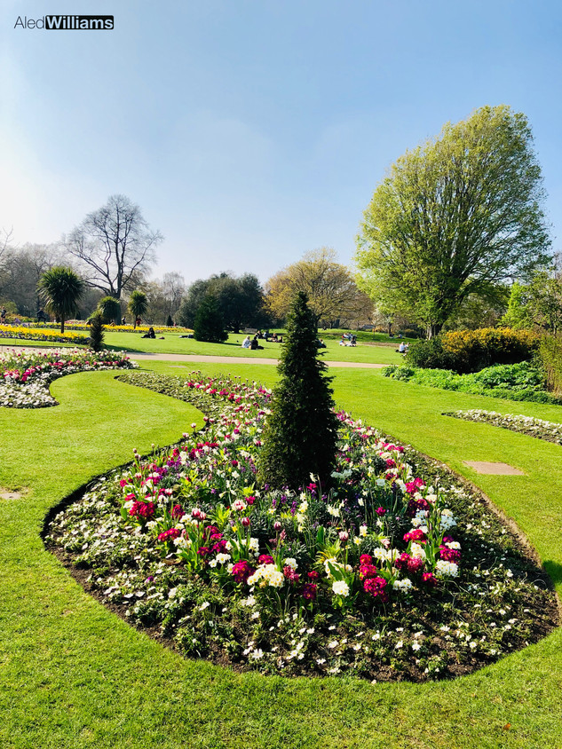 The Rose Garden (Hyde Park)