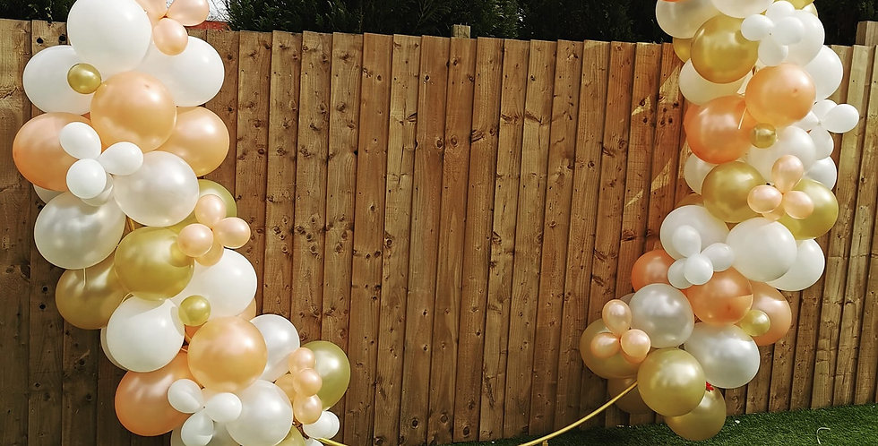 2.6 metre hoop (will only fit outdoors)