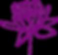 lotus 6.png