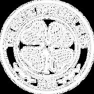 Celtic White Logo.png