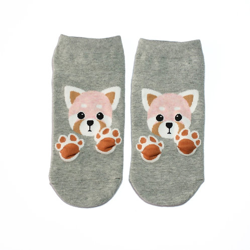 Jelly Pfoten - Katzenbär