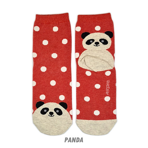Dots on the Toe - Panda