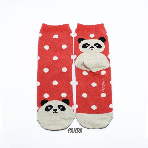 Dots on the Toe - Panda