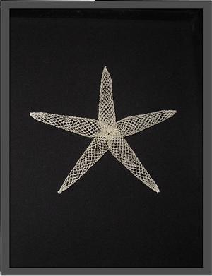 Sea Star.png