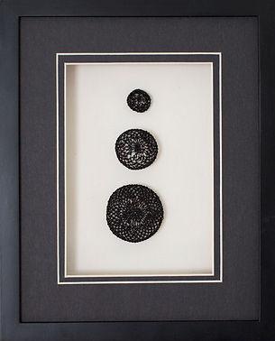 cropped bl sea urchins.jpg