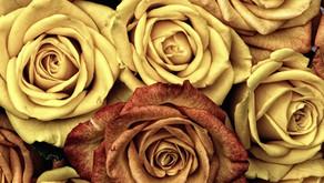 Charlotte Perkins Gilman Dies by Suicide
