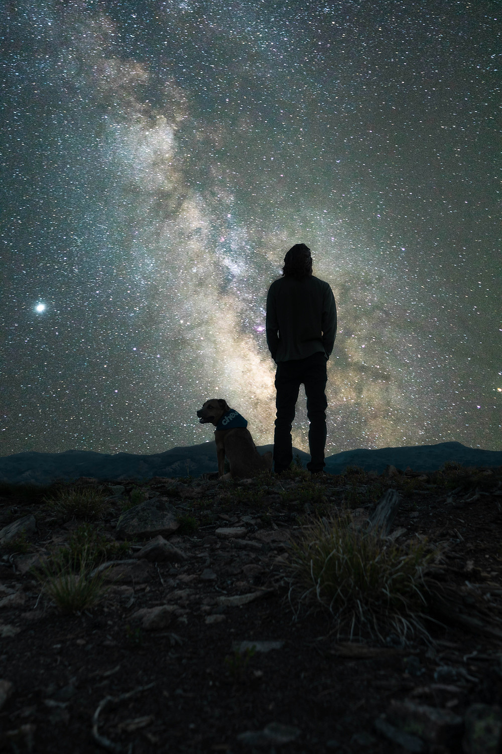 Man and dog alone under a starlit sky