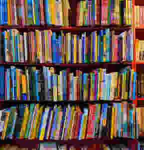Bookshelves with hundreds of slim colored volumes