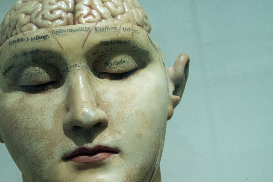 head statue with exposed brain