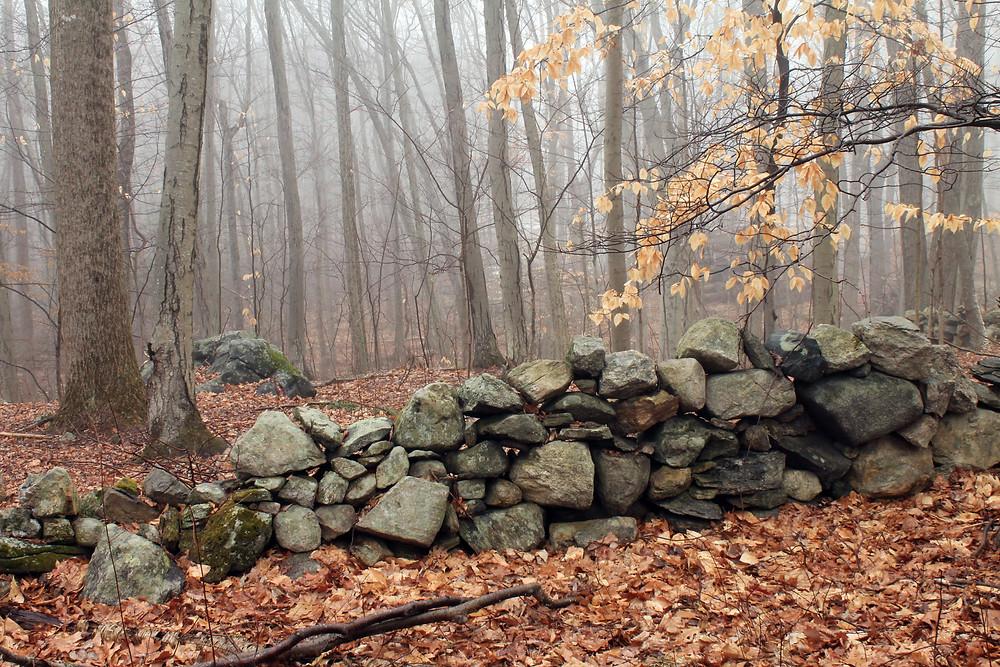 New England Stone Wall, Shutterstock.