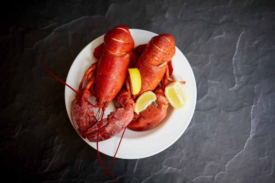 Plate of lobster