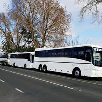 bus rolling.jpg