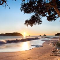 nz beaches.PNG