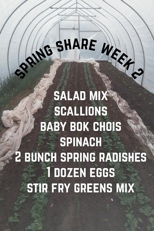 Spring Share Week 2