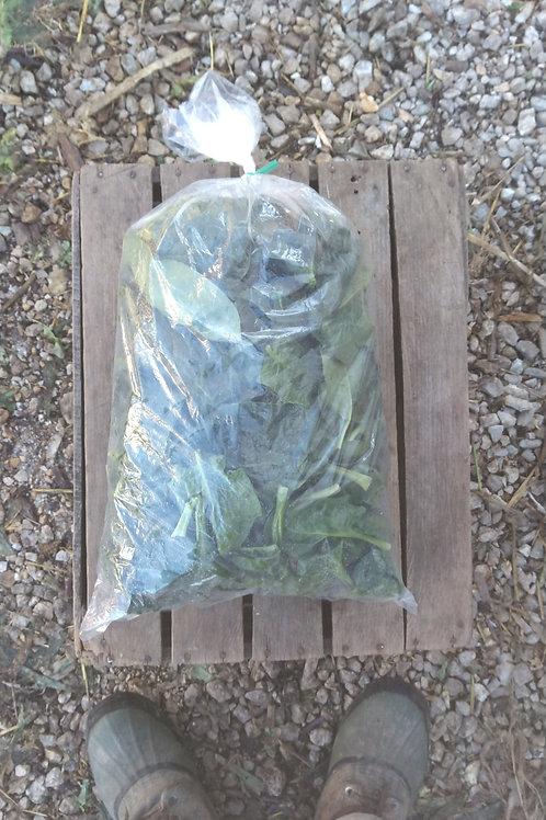 Spinach - 1 pound