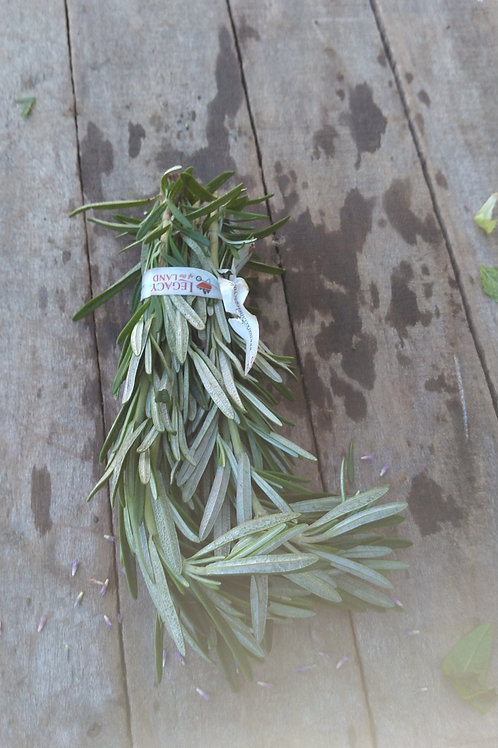Rosemary - 1 Bunch