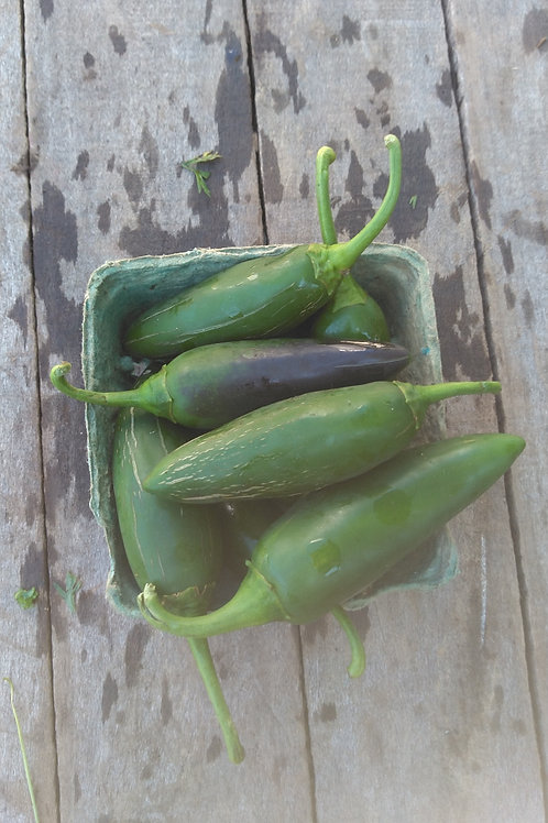 Jalapeno Peppers - 1 Half Pint