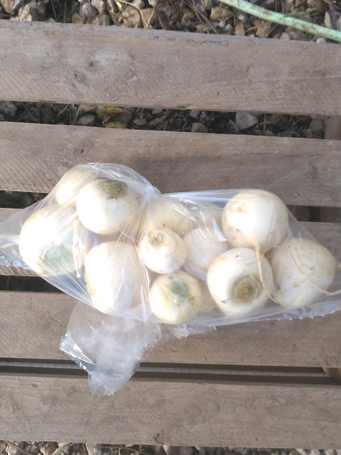 Hakurei (Sweet Salad) Turnip - 1 pound