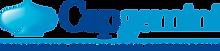 Capgemini_logo.png