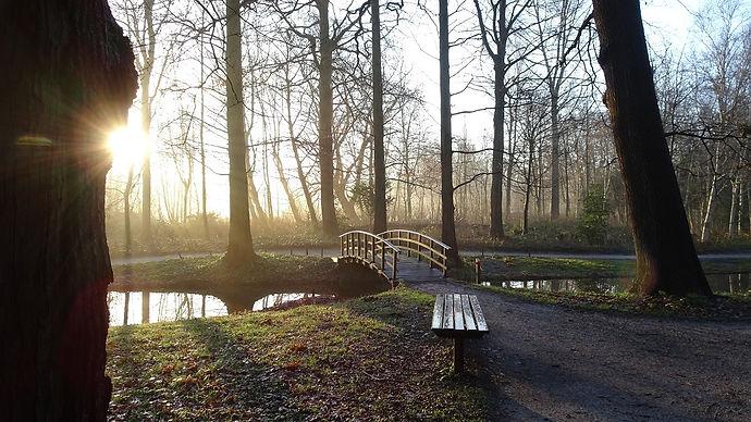 Foto van een wandelpad in de natuur met een brug over het water als symbool voor jouw mogelijkheden