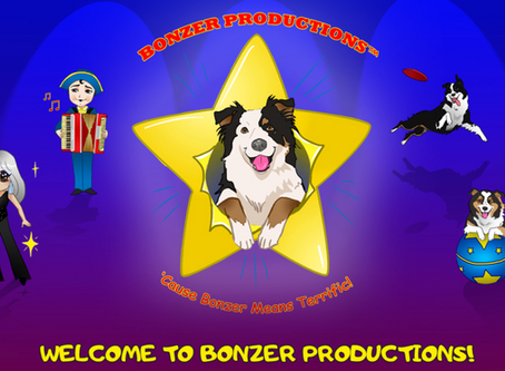 Bonzer Productions offers dog training entertainment workshops and more.