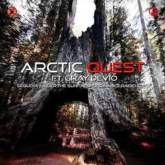 Sequoia New Ordinance Radio Edit Artwork