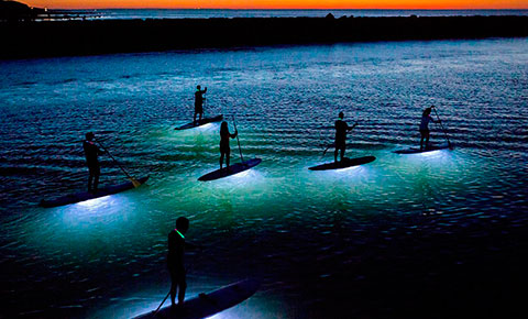 Twilight LED SUP Tour