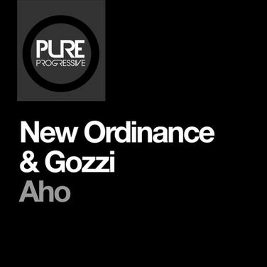 New Ordinance & Gozzi - Aho