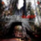 Sequoia New Ordinance Remix Artwork.jpg