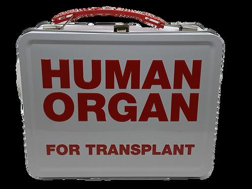 Human Organ Fun Box