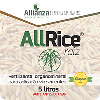 AllRice_Raiz_5l.png