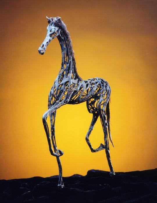 horse_display