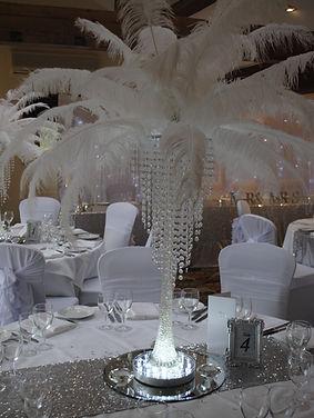 Ostrich Feater Centrepiece