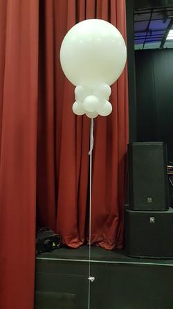3ft white with mini balloon collar
